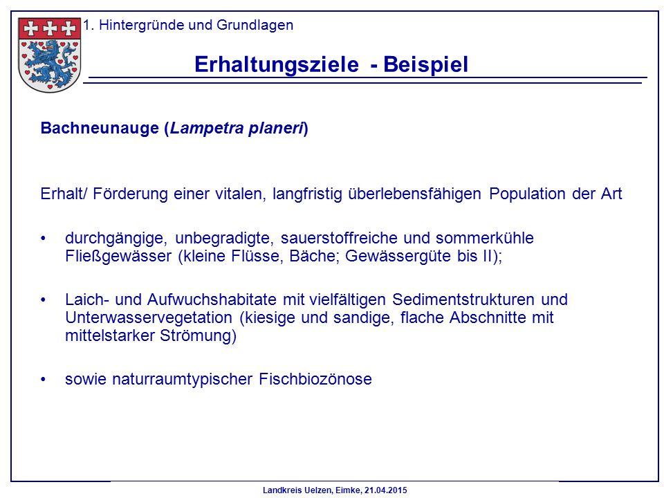 Landkreis Uelzen, Eimke, 21.04.2015 Erhaltungsziele - Beispiel Bachneunauge (Lampetra planeri) Erhalt/ Förderung einer vitalen, langfristig überlebens
