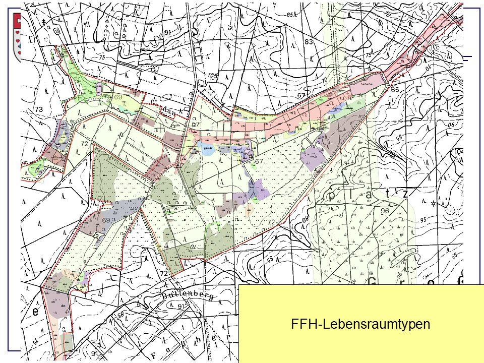 Landkreis Uelzen, Eimke, 21.04.2015 FFH-Lebensraumtypen