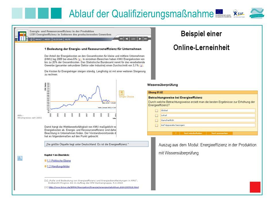 Auszug aus dem Modul: Energieeffizienz in der Produktion mit Wissensüberprüfung Beispiel einer Online-Lerneinheit Ablauf der Qualifizierungsmaßnahme
