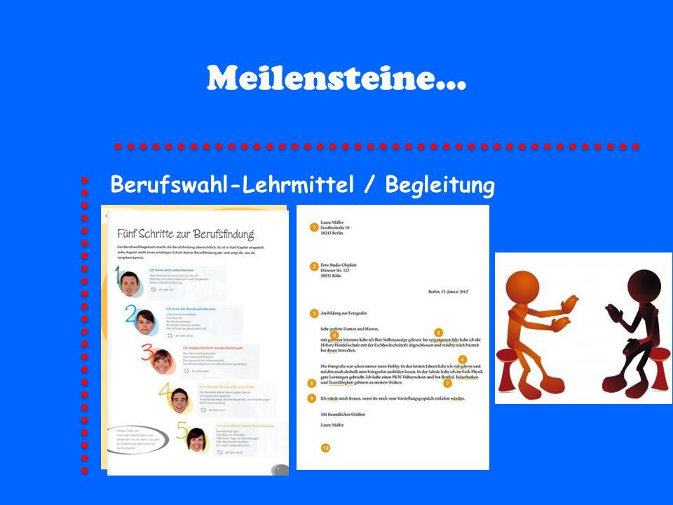 Meilensteine... Berufswahl-Lehrmittel / Begleitung