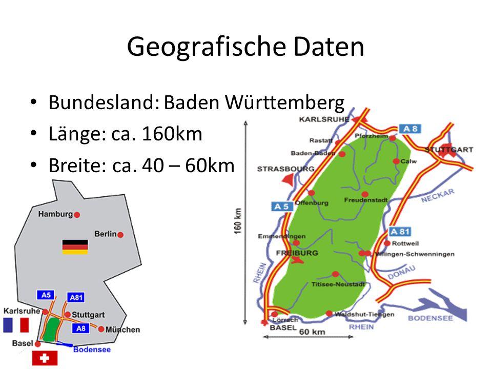 Forstwirtschaft im Schwarzwald Betrieben seit dem Mittelalter Früher Mischwald Seit dem 18.