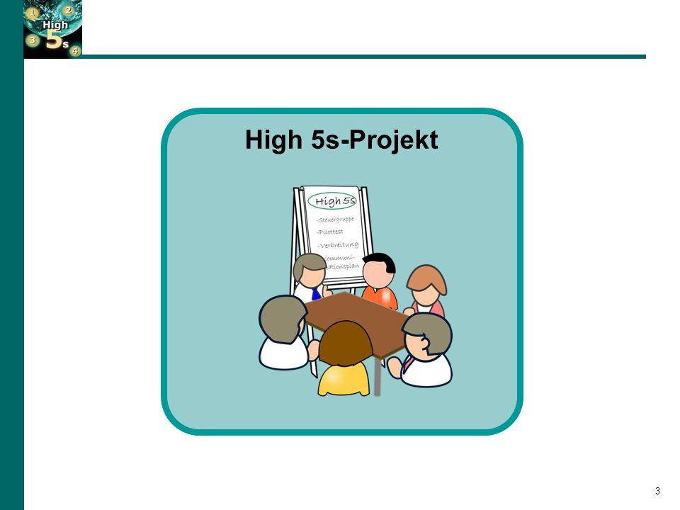 Das High 5s Projekt… 4 8 Ländern, vertreten durch nationale Organisationen und Krankenhäuser WHO Collaborating Centre for Patient Safety (Joint Commission International) WHO Patient Safety … wurde 2007 durch die Weltgesundheitsorganisation (WHO) zur Verbesserung der Patientensicherheit in Krankenhäusern initiiert … basiert auf einer weltweiten Zusammenarbeit von: