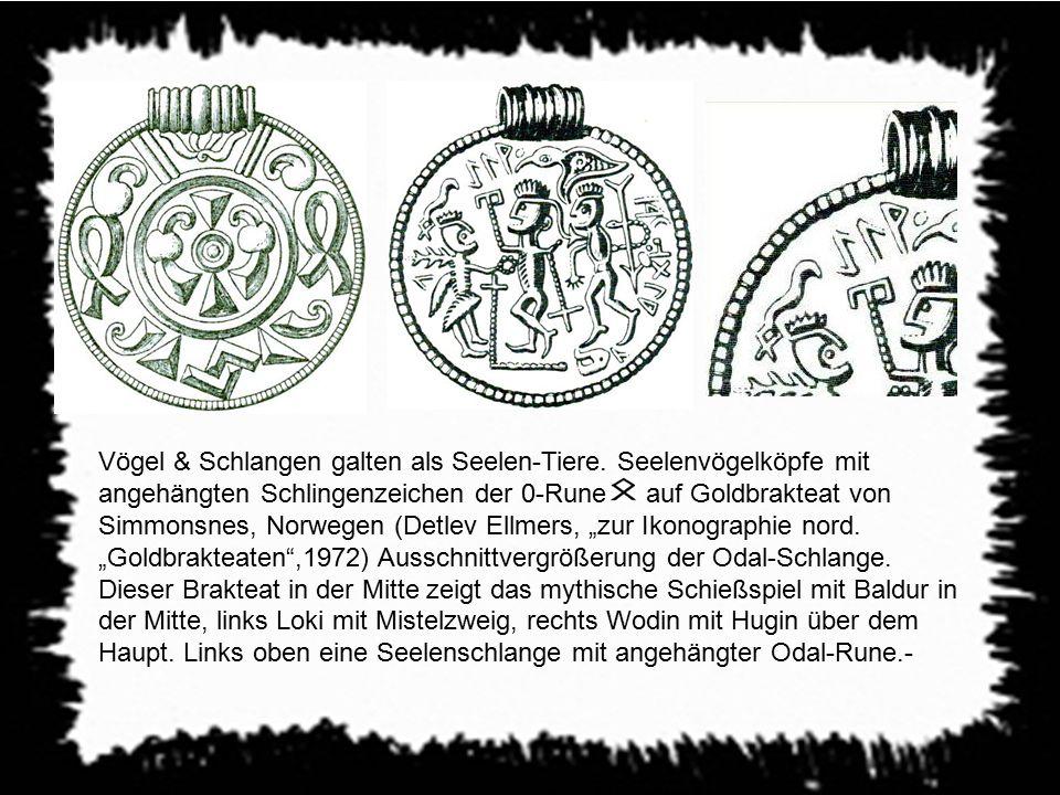 Vögel & Schlangen galten als Seelen-Tiere. Seelenvögelköpfe mit angehängten Schlingenzeichen der 0-Rune - auf Goldbrakteat von Simmonsnes, Norwegen (D