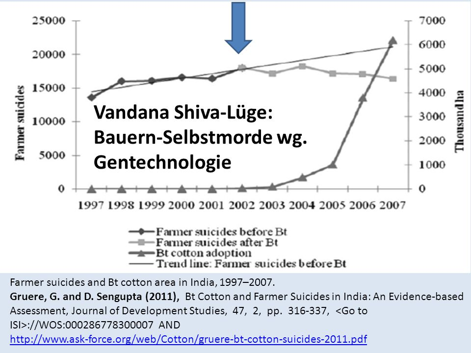Farmer suicides and Bt cotton area in India, 1997–2007. Gruere, G. and D. Sengupta (2011), Bt Cotton and Farmer Suicides in India: An Evidence-based A