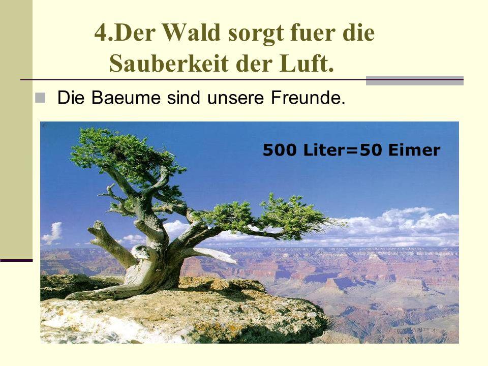 4.Der Wald sorgt fuer die Sauberkeit der Luft. Die Baeume sind unsere Freunde. 500 Liter=50 Eimer