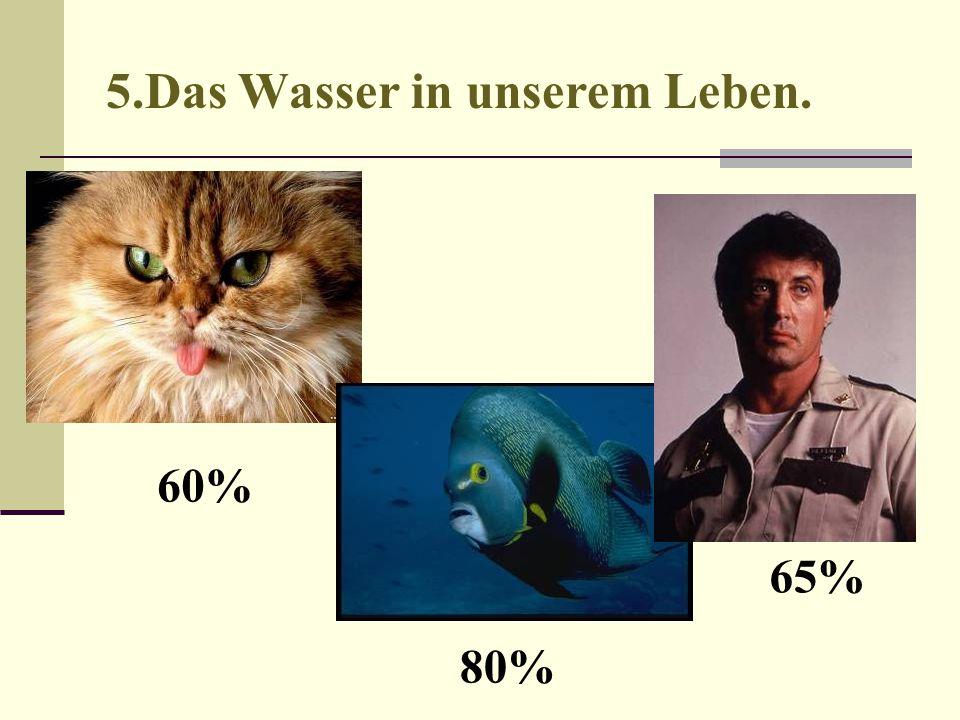 60% 80% 65%