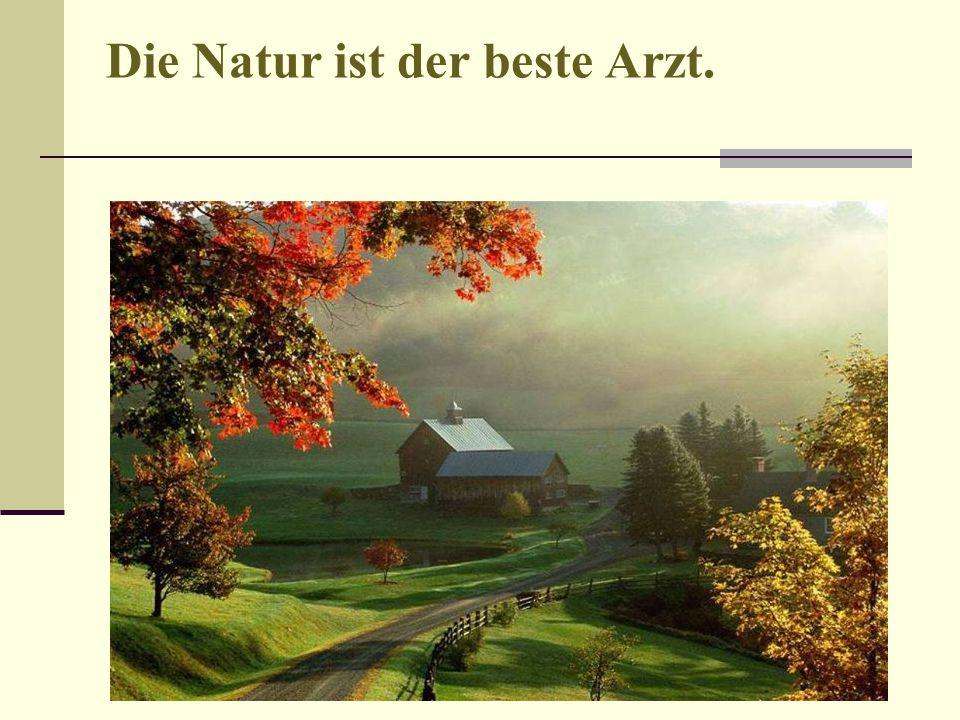 Die Natur ist der beste Arzt.