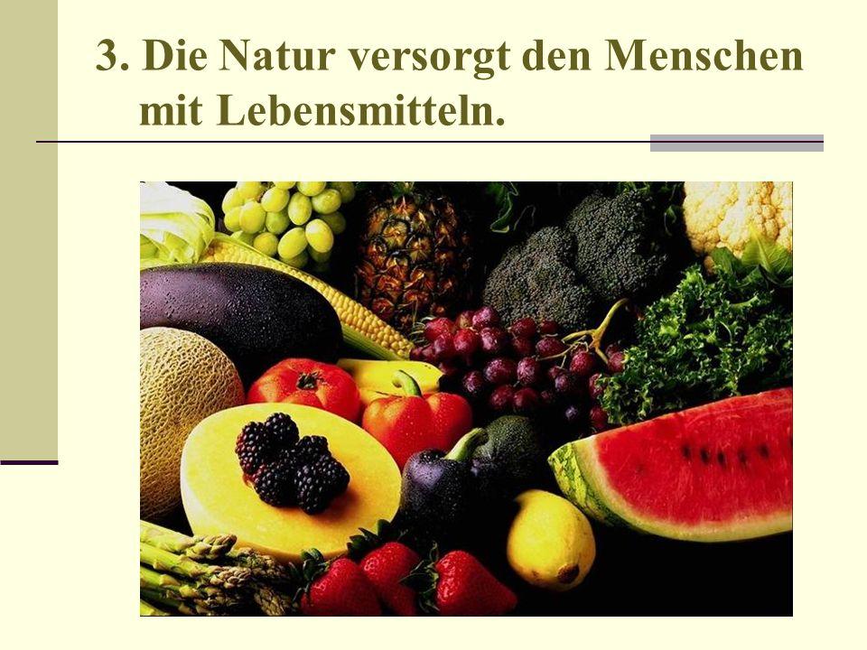 3. Die Natur versorgt den Menschen mit Lebensmitteln.