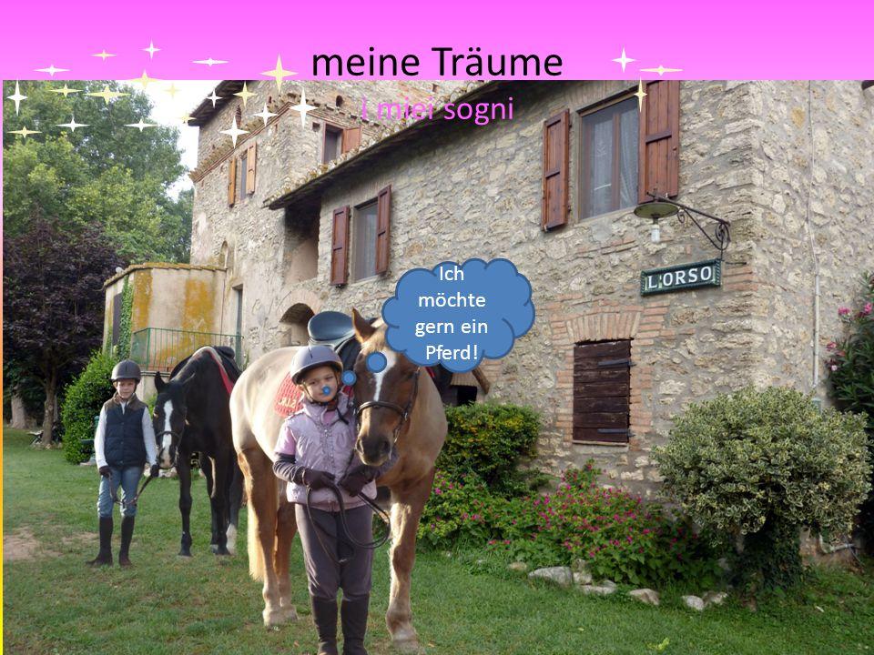meine Träume i miei sogni Ich möchte gern ein Pferd!