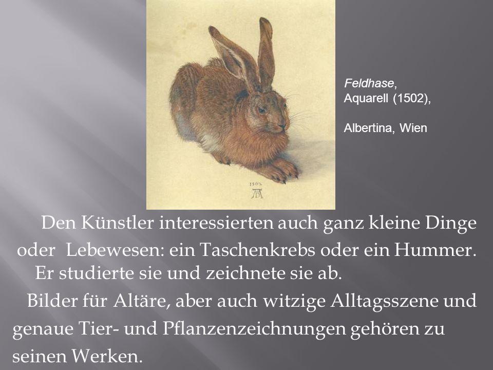 Den Künstler interessierten auch ganz kleine Dinge oder Lebewesen: ein Taschenkrebs oder ein Hummer.