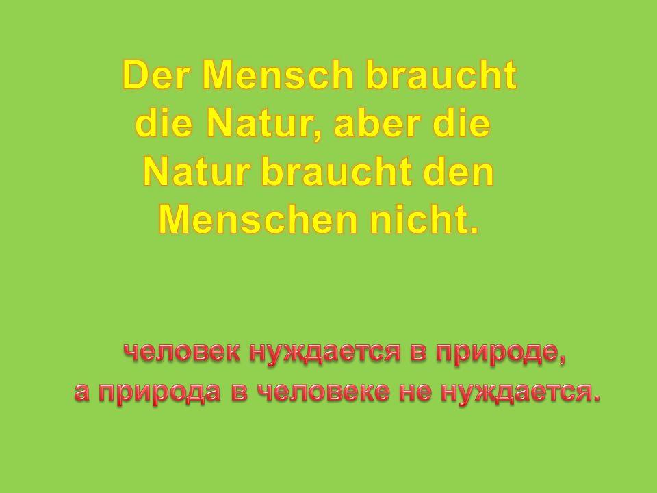Презентация по немецкому языку для учащихся 7 класса по теме « Sorgen wir gemeinsam für unsere Planeten Erde.