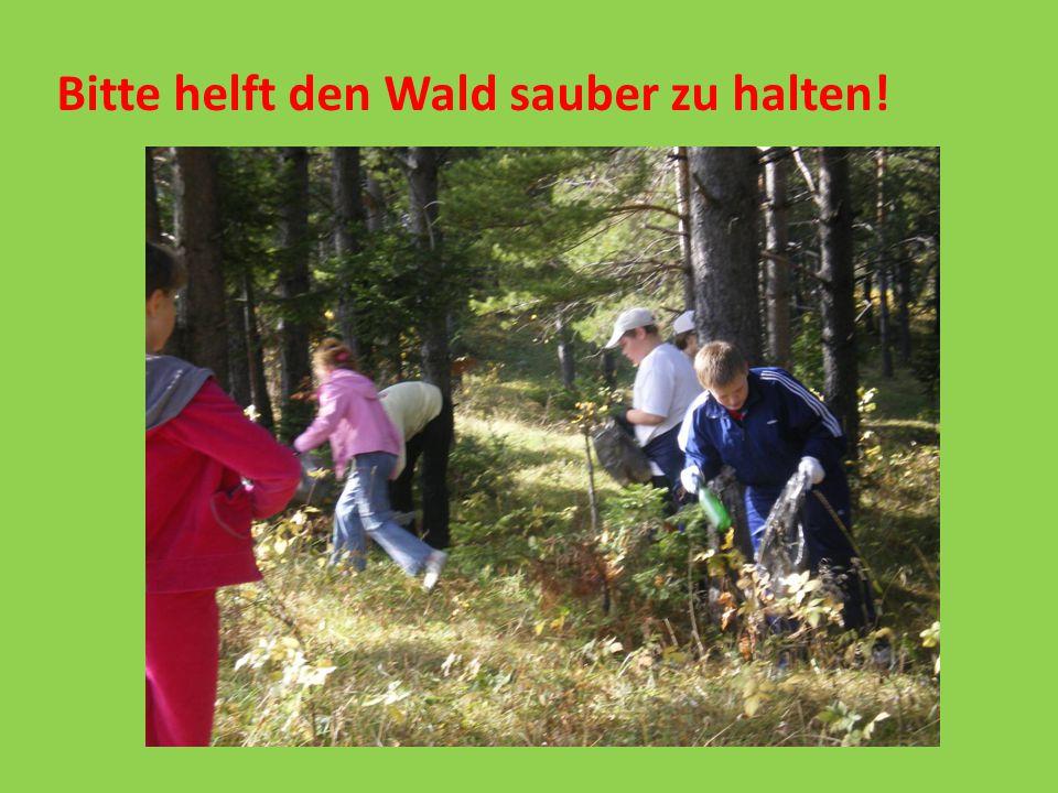 Bitte helft den Wald sauber zu halten!