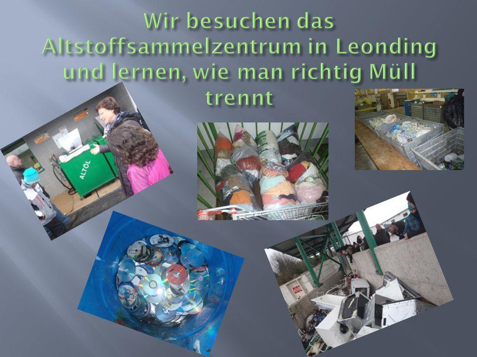  Vorstellen und Kennenlernen aller Teilnehmer  Mülltrennen- Workshop  Sightseeing in Wien, Linz und Leonding  Schneeschuhwan dern und Bobfahren