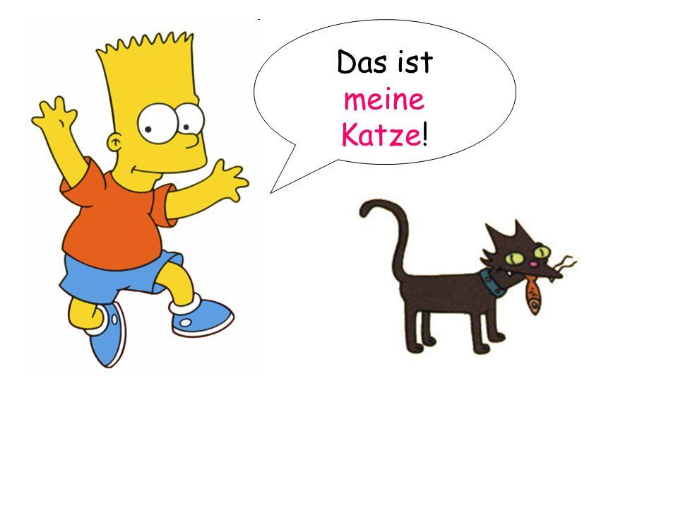 Das ist meine Katze!