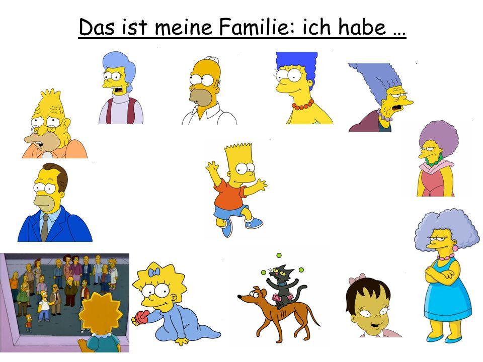 Das ist meine Familie: ich habe …
