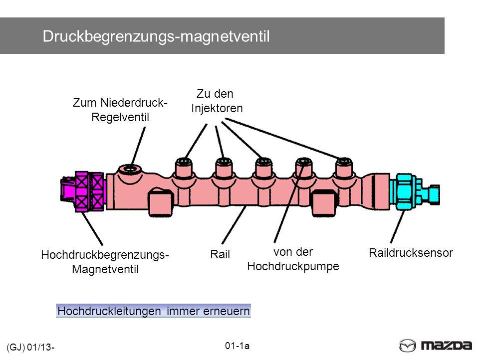 Druckbegrenzungs-magnetventil Raildrucksensor Zu den Injektoren Zum Niederdruck- Regelventil von der Hochdruckpumpe Rail Hochdruckbegrenzungs- Magnetventil Hochdruckleitungen immer erneuern 01-1a (GJ) 01/13-