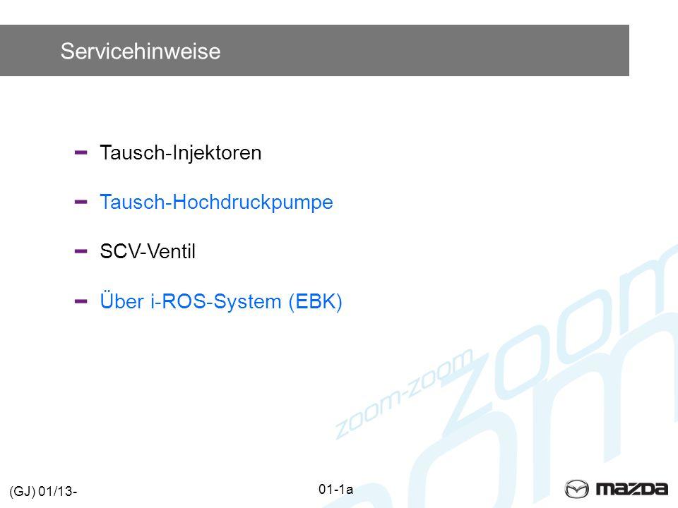 Servicehinweise Tausch-Injektoren Tausch-Hochdruckpumpe SCV-Ventil Über i-ROS-System (EBK) 01-1a (GJ) 01/13-