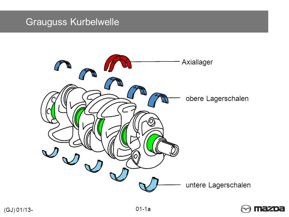 Zylinderkopf mit Abgaskrümmer Einlassseite Auslassseite Zum EGR-Kühler Zum EGR-Ventil 01-1a (GJ) 01/13-