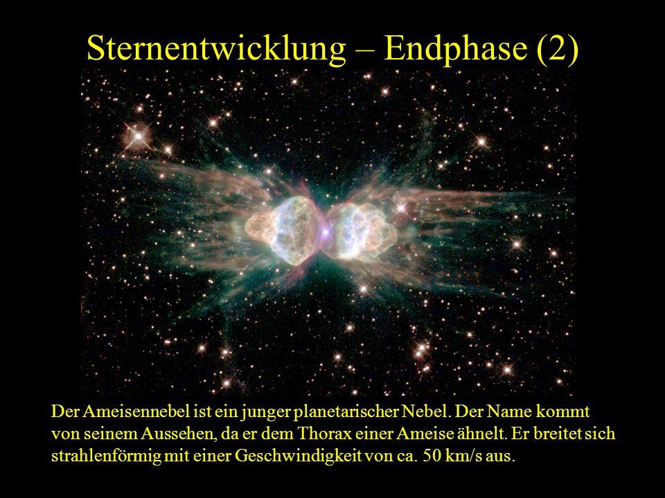 Sternentwicklung – Endphase (2) Der Ameisennebel ist ein junger planetarischer Nebel. Der Name kommt von seinem Aussehen, da er dem Thorax einer Ameis