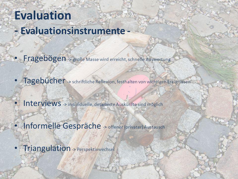 Evaluation - Evaluationsinstrumente - Fragebögen -> große Masse wird erreicht, schnelle Auswertung Tagebücher -> schriftliche Reflexion, festhalten vo