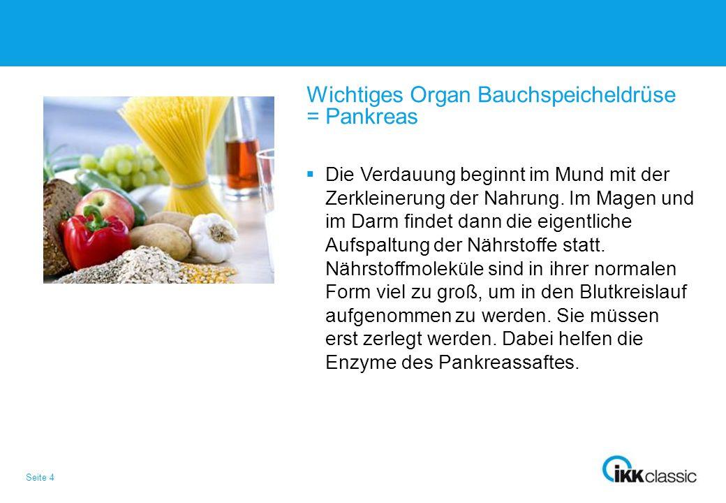 Seite 4 Wichtiges Organ Bauchspeicheldrüse = Pankreas  Die Verdauung beginnt im Mund mit der Zerkleinerung der Nahrung. Im Magen und im Darm findet d