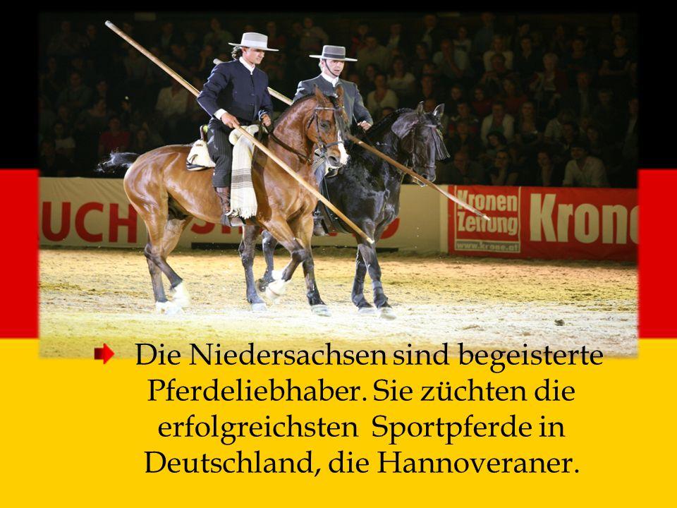 Die Niedersachsen sind begeisterte Pferdeliebhaber. Sie züchten die erfolgreichsten Sportpferde in Deutschland, die Hannoveraner.