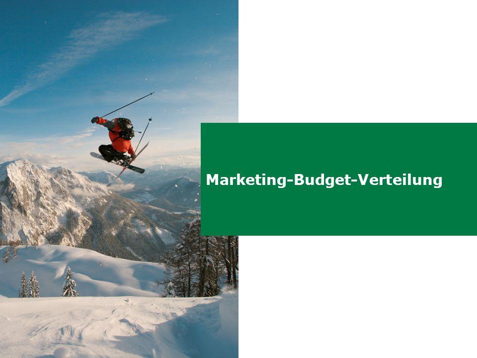 Marketing-Budget-Verteilung