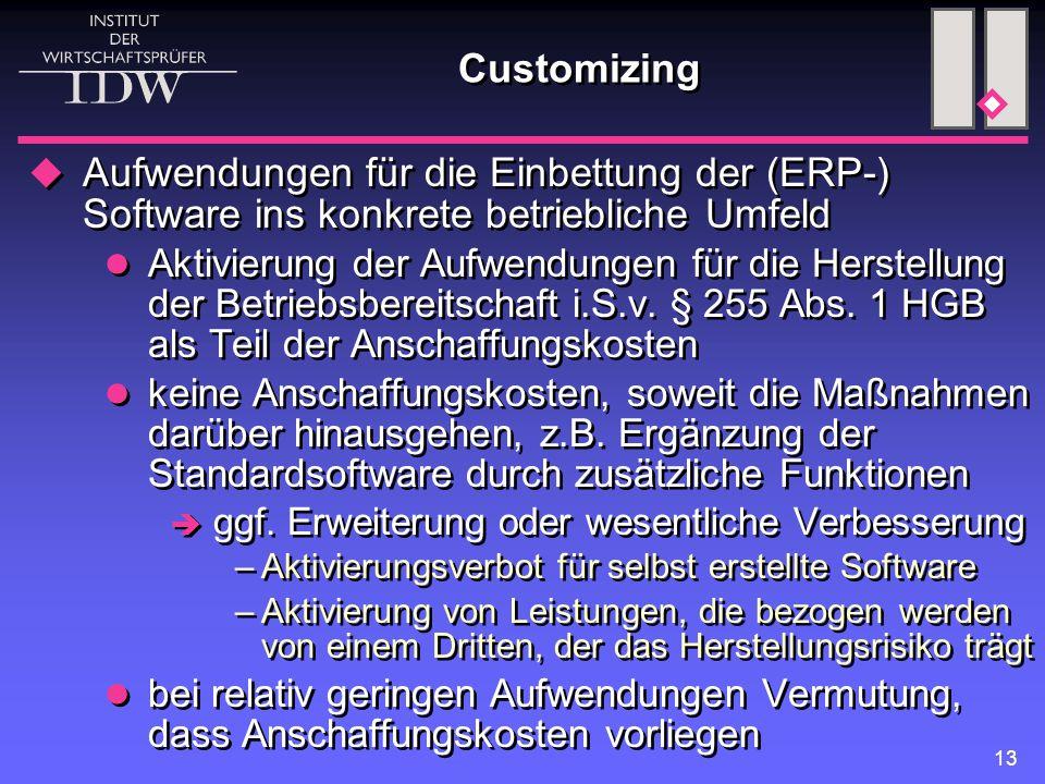13 Customizing  Aufwendungen für die Einbettung der (ERP-) Software ins konkrete betriebliche Umfeld Aktivierung der Aufwendungen für die Herstellung