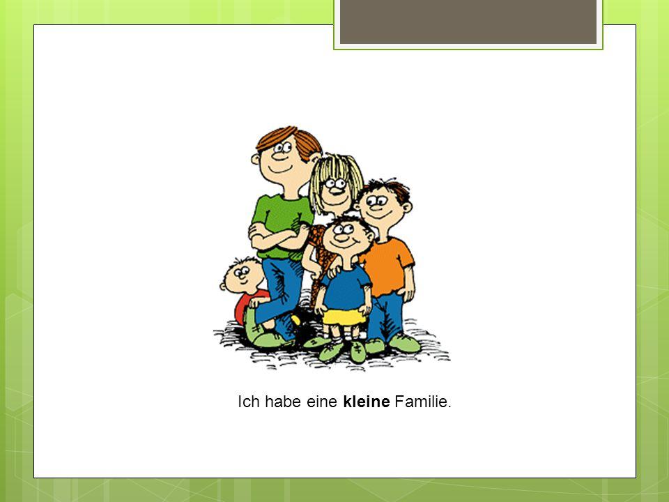 Ich habe eine kleine Familie.