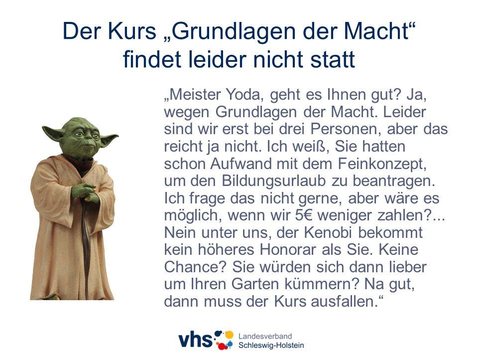 """Der Kurs """"Grundlagen der Macht findet leider nicht statt """"Meister Yoda, geht es Ihnen gut."""