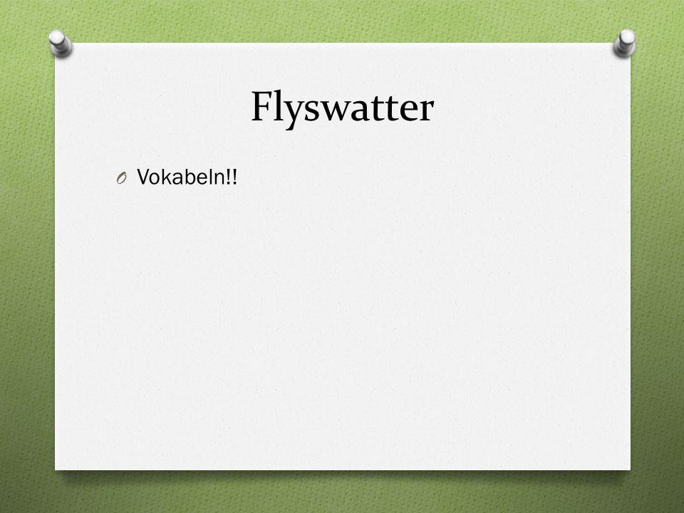 Flyswatter O Vokabeln!!