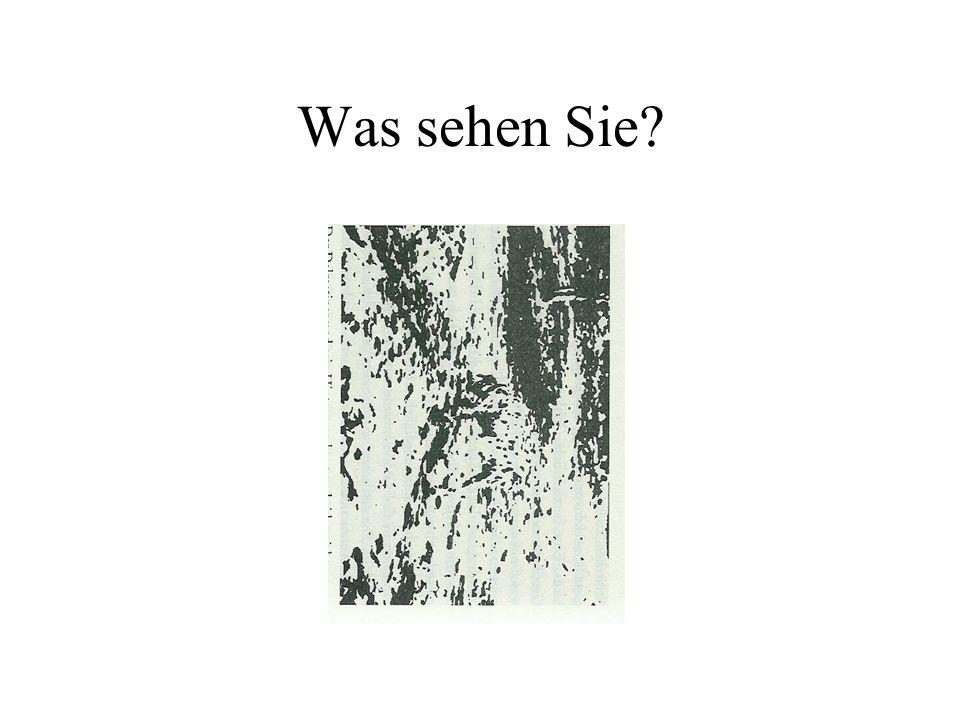 Was sehen Sie?