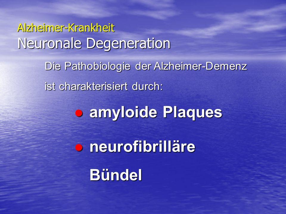Alzheimer-Krankheit Neuronale Degeneration Die Pathobiologie der Alzheimer-Demenz ist charakterisiert durch: amyloide Plaques amyloide Plaques neurofi
