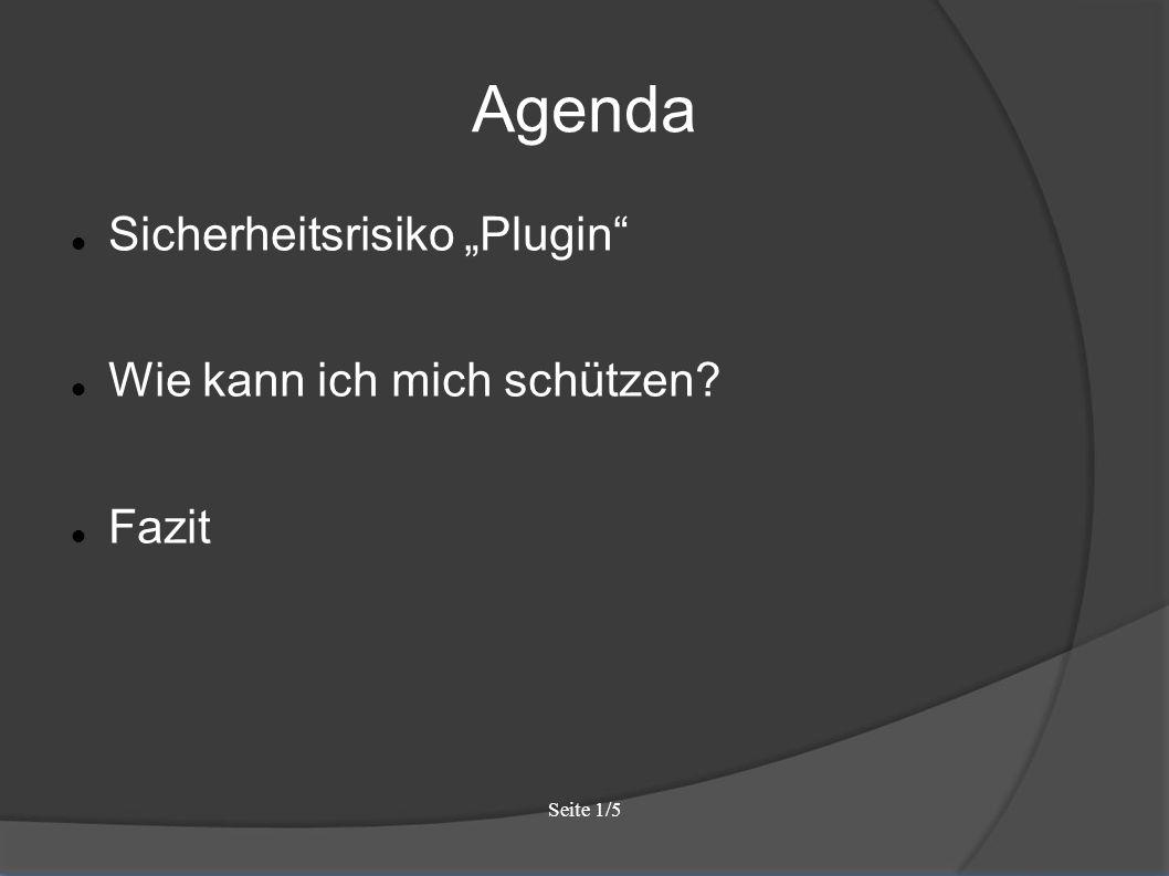 """Seite 1/5 Agenda Sicherheitsrisiko """"Plugin Wie kann ich mich schützen Fazit"""