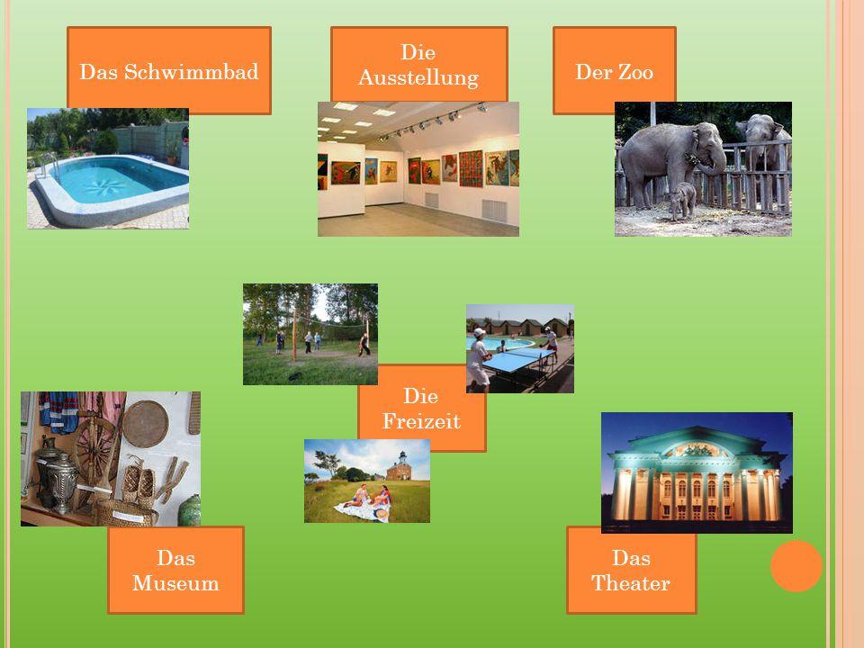 Das Schwimmbad Die Ausstellung Der Zoo Das Theater Die Freizeit Das Museum
