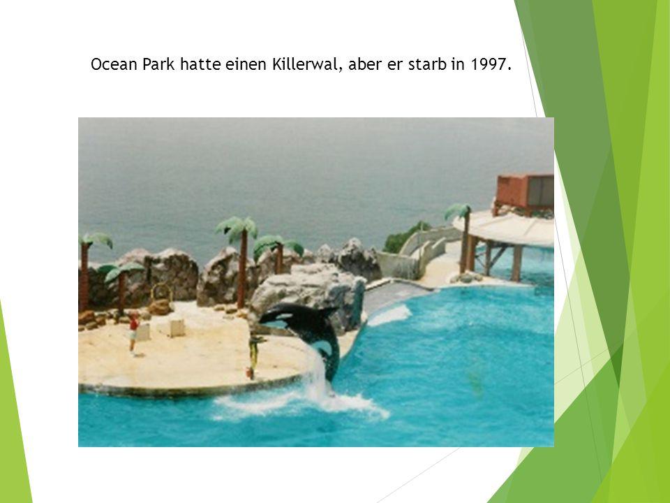 Ocean Park hatte einen Killerwal, aber er starb in 1997.
