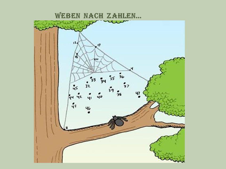 Weben nach zahlen…