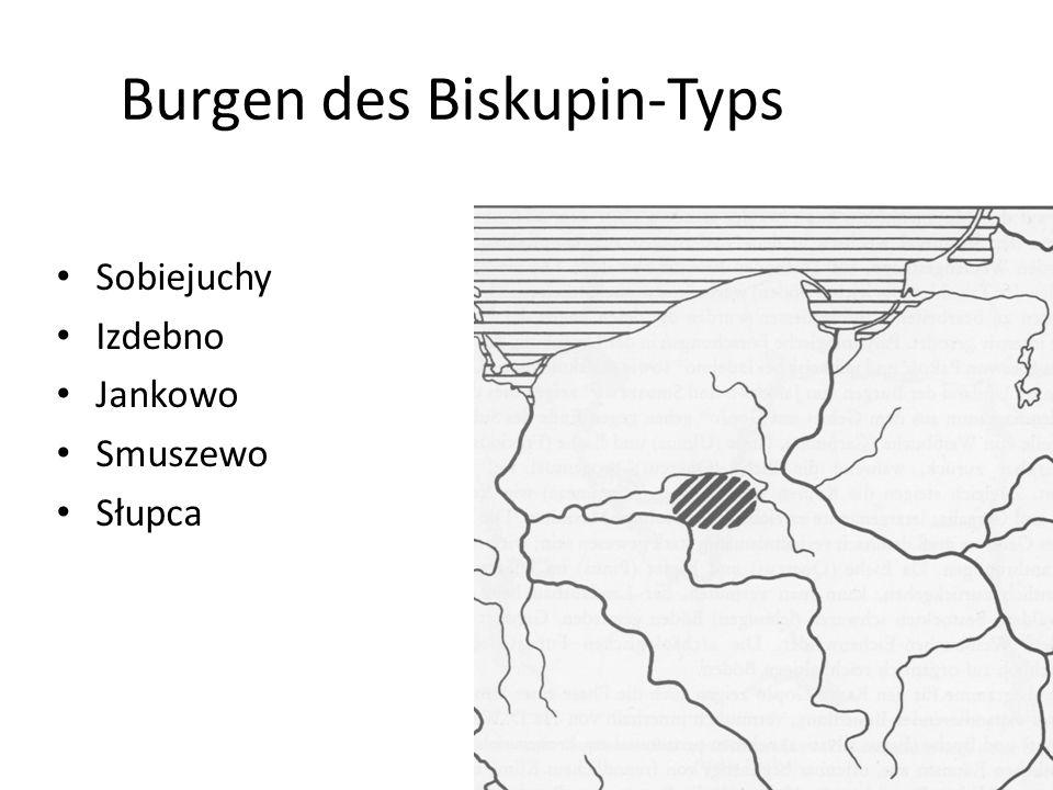 Burgen des Biskupin-Typs Sobiejuchy Izdebno Jankowo Smuszewo Słupca