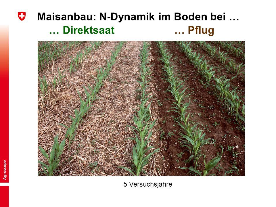 4 Kurzinput «Bodentechnologie und Kulturlanderhaltung» | BGS-Jahrestagung 2015 Peter Weisskopf Maisanbau: N-Dynamik im Boden bei … … Direktsaat … Pflu