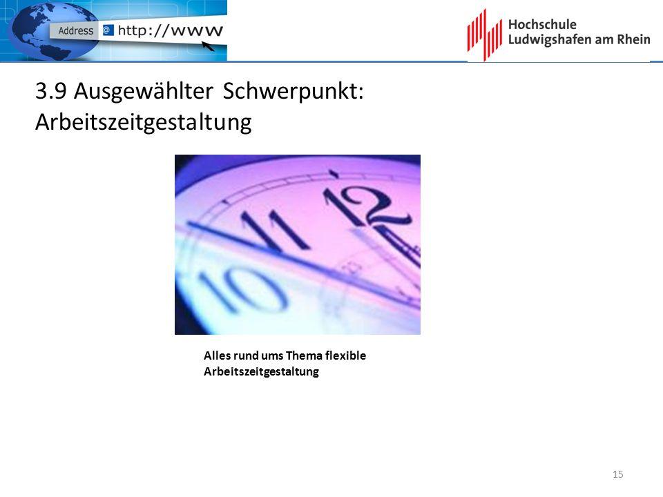 3.9 Ausgewählter Schwerpunkt: Arbeitszeitgestaltung Alles rund ums Thema flexible Arbeitszeitgestaltung 15