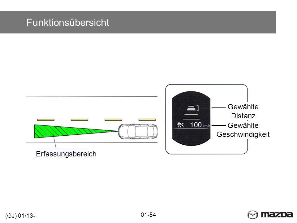 Funktionsübersicht Erfassungsbereich (GJ) 01/13- 01-54 Gewählte Distanz Gewählte Geschwindigkeit