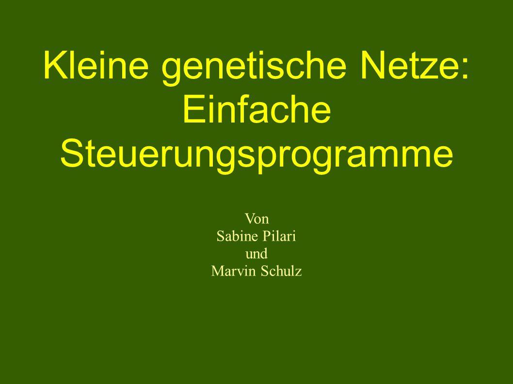 Kleine genetische Netze: Einfache Steuerungsprogramme Von Sabine Pilari und Marvin Schulz