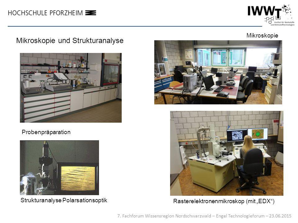 """Mikroskopie Rasterelektronenmikroskop (mit """"EDX"""") Strukturanalyse Polarsationsoptik Mikroskopie und Strukturanalyse Probenpräparation 7. Fachforum Wis"""