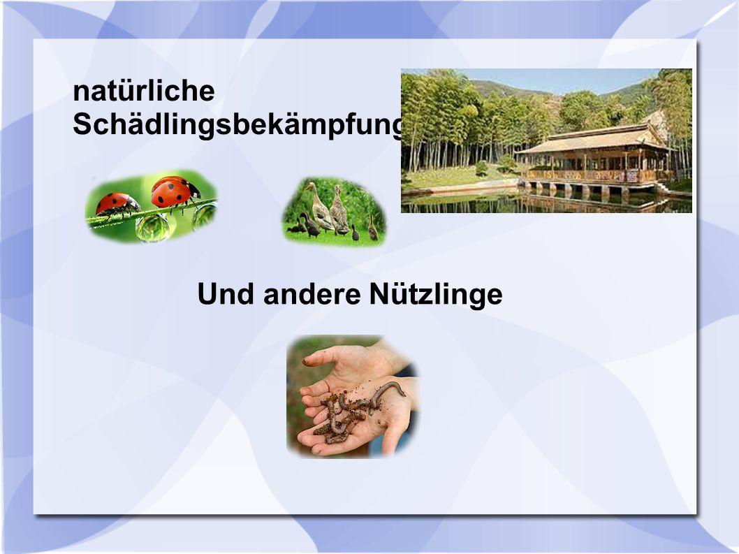 natürliche Schädlingsbekämpfung Und andere Nützlinge