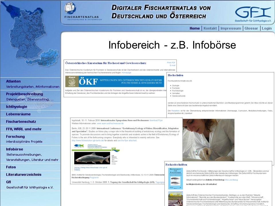21 Infobereich - z.B. Infobörse