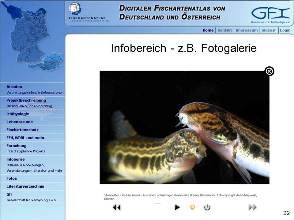 22 Infobereich - z.B. Fotogalerie 