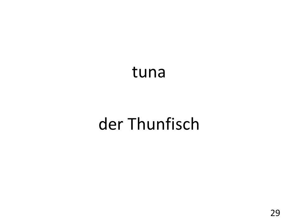 tuna der Thunfisch 29