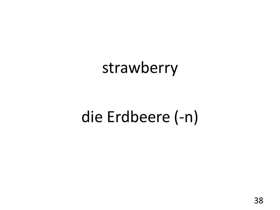 strawberry die Erdbeere (-n) 38