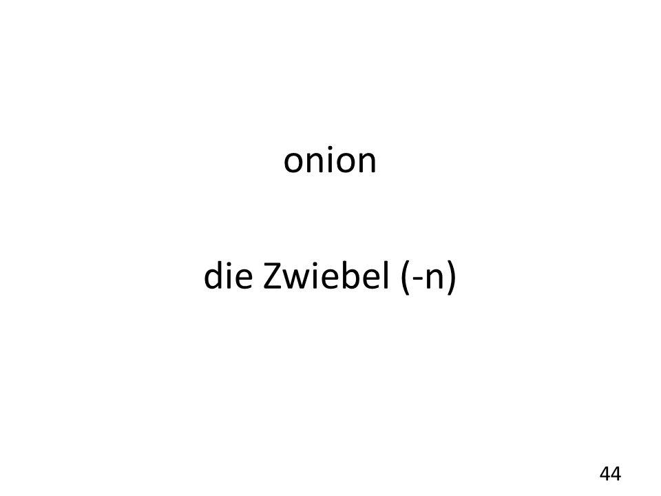 onion die Zwiebel (-n) 44