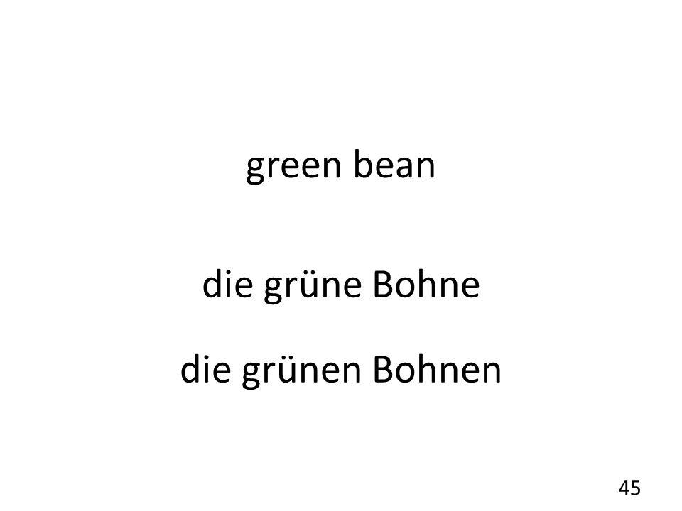 green bean die grüne Bohne die grünen Bohnen 45